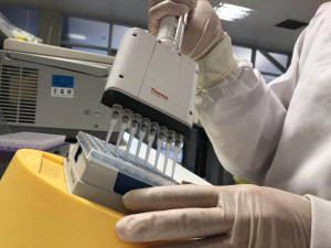 ESR scientist preparing a polymerase chain reaction test as part of diagnostic laboratory testing for 2019 novel coronavirus